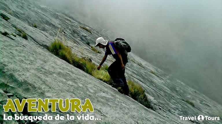 Frases de Trekking y Aventura
